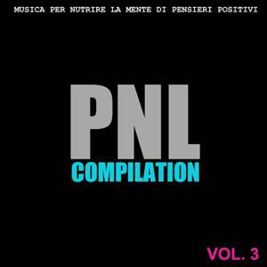 PNL Compilation, Vol. 3