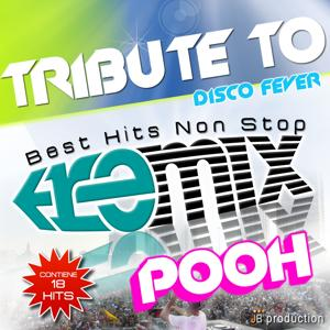 Tribute to Pooh Non Stop Dance Remix