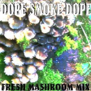 Fresh Mushroom Mix