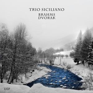 Johannes Brahms, Antonín Dvorák : Trios