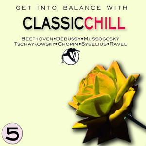 Classic Chill, Vol.5