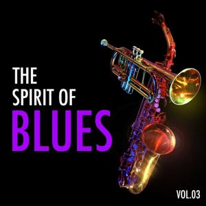 H.o.t.s Presents : The Spirit of Blues, Vol. 3