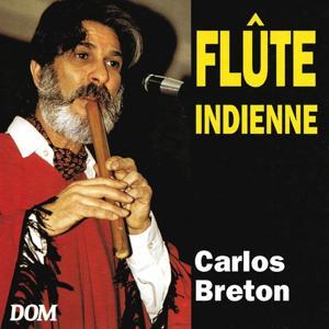 Flûte indienne