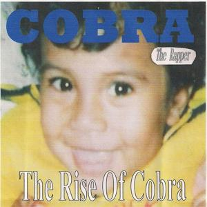 The Rise of Cobra