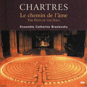 Chartres, the Path of the Soul