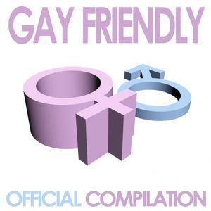 Gay Friendly, Vol.1