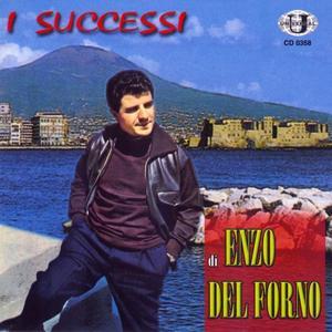 I successi di Enzo Del Forno