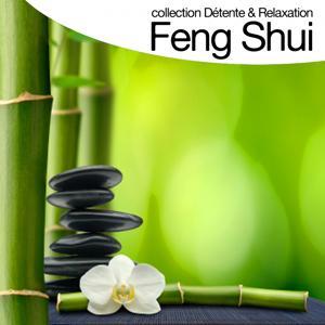 Feng shui (Collection détente et relaxation)