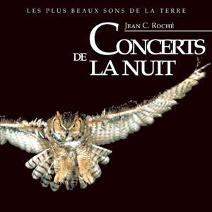 Concerts de la nuit
