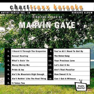 Artist Series Vol. 10 - Sing The Songs of Marvin Gaye