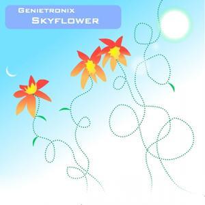 Skyflower EP