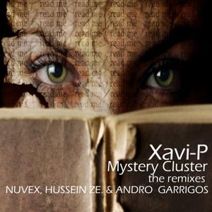 Mystery Cluster (The Remixes)
