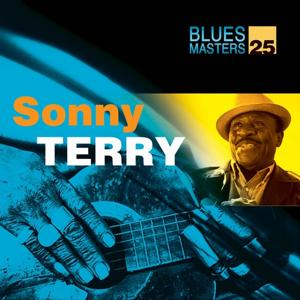 Blues Masters Vol. 25