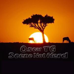 Scene Not Herd