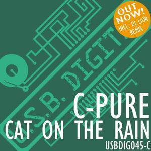 Cat On The Rain