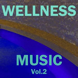 Wellness Music, Vol. 2