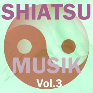 Shiatsu Musik, Vol. 3