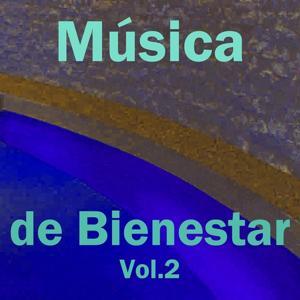 Música de Bienestar, Vol. 2