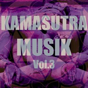 Kamasutra musik, vol. 3