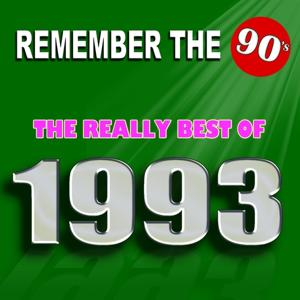 Remember the 90's : The Really Best of 1993