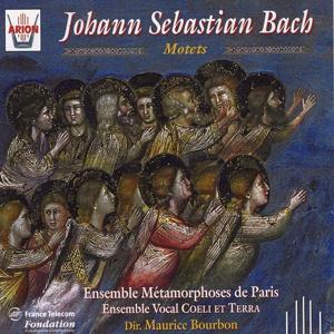 Bach : Motets