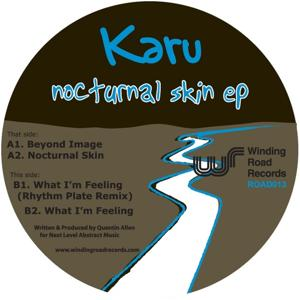 Nocturnal Skin EP