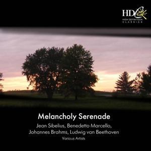 Melancholy Serenade