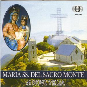 Maria SS. del Sacro monte di Novi Velia