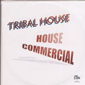 Tribal House - House Commercial