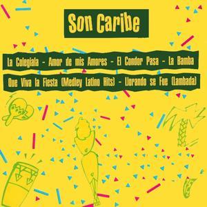 Que Viva La Fiesta (Tropical Hits)