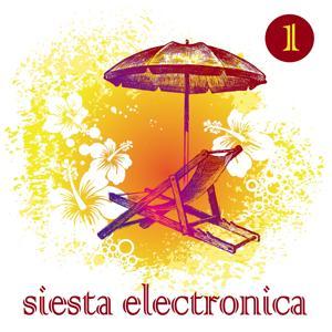 Siesta Electronica Vol. 1