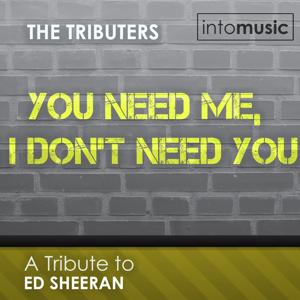 You Need Me, I Don't Need You (A Tribute to Ed Sheeran - the Mixes)