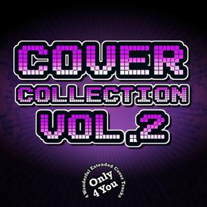 Cover Collection, Vol. 2