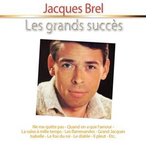 Les grands succès: Jacques Brel