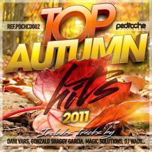 Top Autumn Hits 2011
