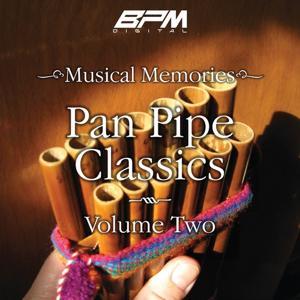 Pan Pipe Classics, Vol. 2