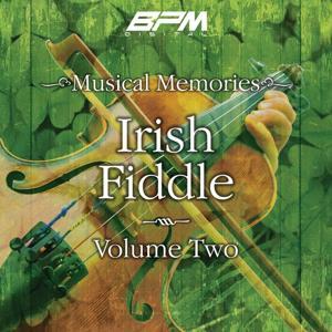 Irish Fiddle, Vol. 2