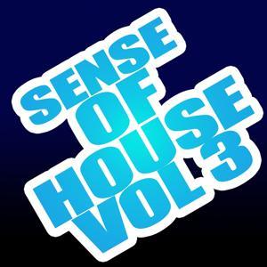 Sense of House, Vol. 3