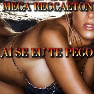 Ai Se Eu Te Pego: Mega Reggaeton