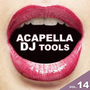 Acapella DJ Tools, Vol. 14