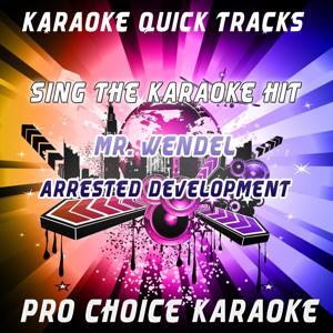 Karaoke Quick Tracks : Mr. Wendel (Karaoke Version) (Originally Performed By Arrested Development)