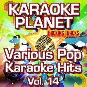 Various Pop Karaoke Hits, Vol. 14 (Karaoke Version)