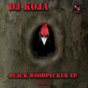 Black Woodpecker EP