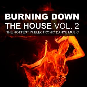 Burning Down The House, Vol. 2 - The Hottest In Electronic Dance Music