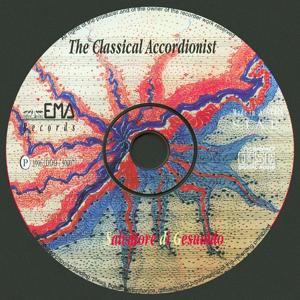 The classical accordionist (Fisarmonica - accordeon)