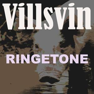 Villsvin ringetone