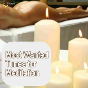 Most Wanted Tunes for Meditation