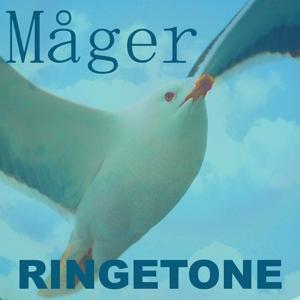 Måger Ringetone