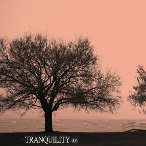 Tranquility 005
