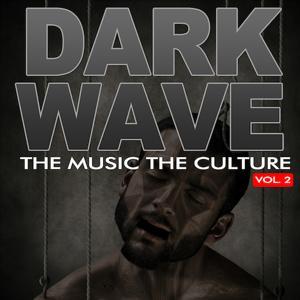 The Music The Culture: Dark Wave, Vol.2